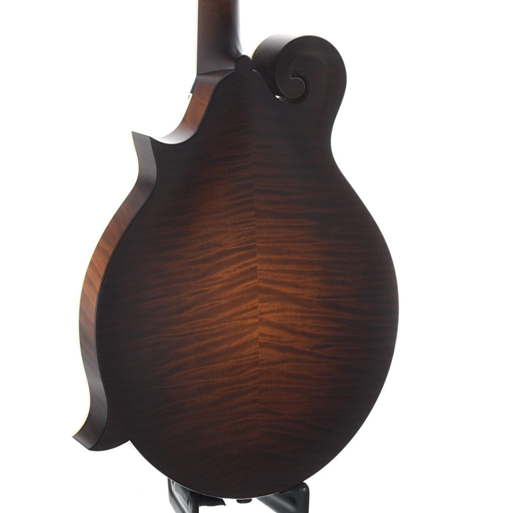 6 Questions to Ask Before Buying a Mandolin – Elderly Instruments